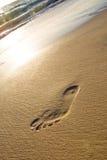 Impression de pied d'homme sur une plage blanche de sable Image libre de droits