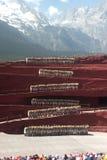 Impression Lijiang in Yunnan of China. LIJIANG,CHINA-MARCH 16 : Actors participateImpression Lijianglive performance on March 16,2014,at Yunnan Lijiang Ganhaizi Royalty Free Stock Photo