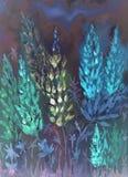 Impression nocturne des lupines bleuâtres d'un bas point de vue Image stock