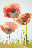 Impression of poppies in a field. The dabbing technique near the edges gives a soft focus effect due to the altered surface roughness of the paper Stock Image