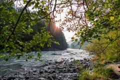 Impressioni della riva del fiume fotografia stock libera da diritti