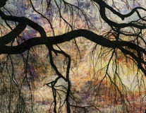 Impressionist Landscape stock photo
