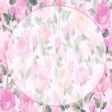Impressionist oil painting Rose blossom Flowers. Rose wall paper original art watercolor painting roundl frame perfect for copy Royalty Free Stock Photo