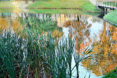 Impressionistic fall. Royalty Free Stock Photos