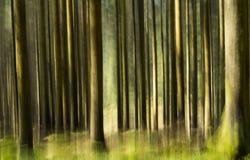 Impressionistic skog Arkivfoto