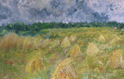 Impressionistic wheatfield. Stock Photography