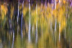 Impressionistische Aspen-Wasserreflexionen außerhalb Tellurid-Col. lizenzfreies stockbild