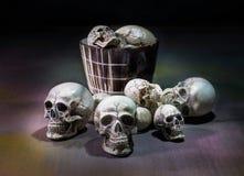 Impressionnantes, pile de crâne, sur le plancher et dans la tasse, Images stock