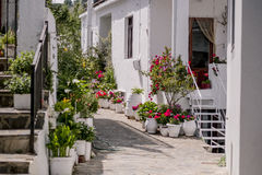 Impressions from Crete in Summer Stock Photos