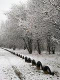 Impressions d'hiver - 17 noirs et blancs photo stock