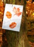 Impressions de lame d'automne images stock