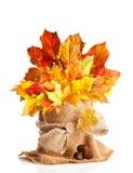 Impressions de lame d'automne Image stock