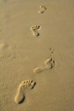 Impressions de pied image libre de droits