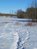 Impressions de pied dans la neige Images libres de droits