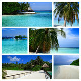 Impressions of Maldives Royalty Free Stock Photo
