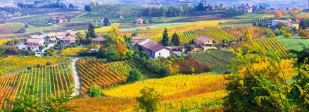 Pictorial countryside and beautiful vineyards of Piemonte in autumn colors. Italy royalty free stock image