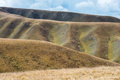Impressive changes of grass color on Tibetan mountains slopes Stock Photography
