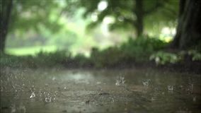 Impressive close up satisfying steady slow motion shot of downpour rain drops falling on pavement asphalt concrete road. Impressive close up steady satisfying stock footage