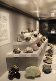 Impressive collection of minerals one might find in New York,State Museum,Albany,2016. Large glass case and shelves lined with interesting rocks and minerals Stock Image