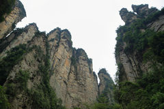 Impressive mountain needles in Zhangjiajie national park Royalty Free Stock Photos