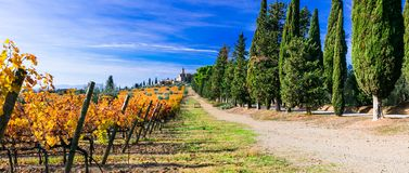 Vineyards and castles of Tuscany in autumn colors. Castello Banfi il borgo. Italy royalty free stock photography