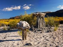 Mono Lake Tufa Towers. Impressive natural tufa formations on the Mono Lake shore. State Natural Reserve, California Stock Images