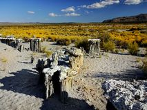 Mono Lake Tufa Towers. Impressive natural tufa formations on the Mono Lake shore. State Natural Reserve, California Royalty Free Stock Image