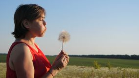 Inspired woman blowing on a dandelion with flying florets in a field in slo-mo. Impressive profile of a romantic woman in a red dress blowing on a dandelion with stock video footage