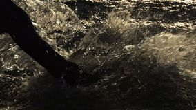 Male hand beats the lake water to entertain at sunset in slo-mo. An impressive view of a kidding young man whose hand beats the lake water with his hand to stock footage