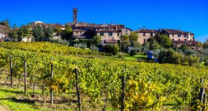 Vineyards and villages of Tuscany, Chianti - famous wine region Stock Image