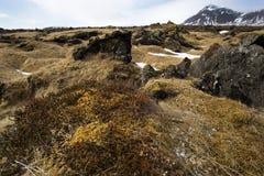 Impressive volcanic landscape on the Snaefellsnes peninsula Stock Images