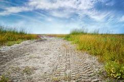Imprima le gomme di automobile su una strada non asfaltata nel deserto Strada sola nella steppa del deserto Fotografie Stock