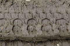 Imprint automobile tires on dirt Stock Photos