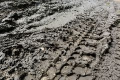 Imprint automobile tires on dirt Royalty Free Stock Image