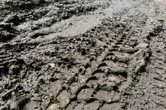 Imprint automobile tires on dirt Stock Photo
