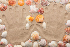 Imprint hands on the sand among the shells Royalty Free Stock Photography
