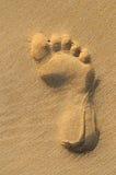 Imprint of human feet on sandy beach Stock Photos