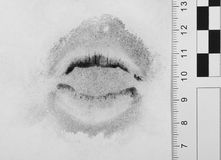 Imprint lips. Royalty Free Stock Image