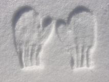 Imprint of mittens in snow Stock Image