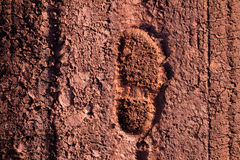 The imprint of the shoe Stock Images