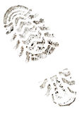 Imprint of the trace. On a white background stock photography