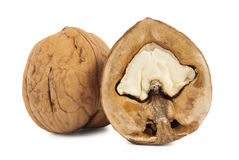 Imprinted walnuts closeup Isolated Stock Photography