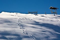 Imprints footsteps in the snow a day of blue sky Stock Image