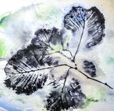 Imprints of leaves. Artistic image - imprints of leaves - Graphics - monotype Stock Images
