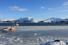 Imprisoned by the ice. A small harbour of Lofoten island with the boats emprisoned by ice royalty free stock photography