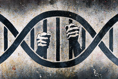 Free Imprisoned In DNA Cage Royalty Free Stock Image - 4720616