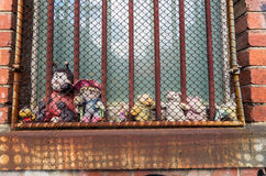 Imprisoned soft toys behind window bars Stock Image