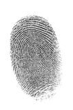 Impronta digitale. Immagine Stock Libera da Diritti