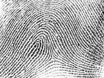 Impronta digitale Fotografie Stock