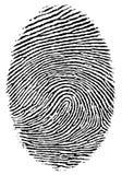 Impronta digitale. illustrazione vettoriale